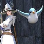 A Girl and her Bird by Shadow-Ninja-Zero