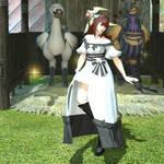 Dance of Joy by Shadow-Ninja-Zero