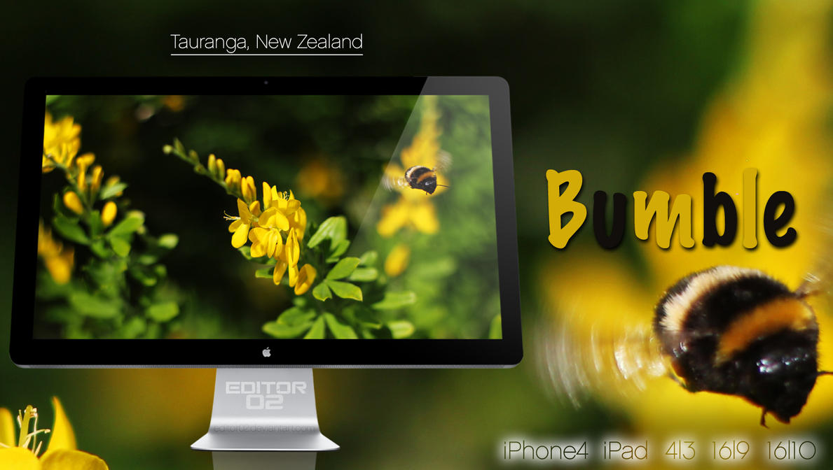 Bumble - Wallpaper by GavinAsh