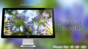 Purple Blooms - Wallpaper