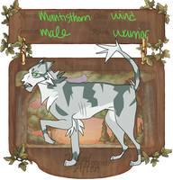 WCA app- Mantisthorn