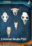5 Animal Skulls PSD Pack