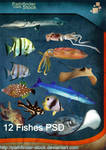 12 Fishes PSD Pack