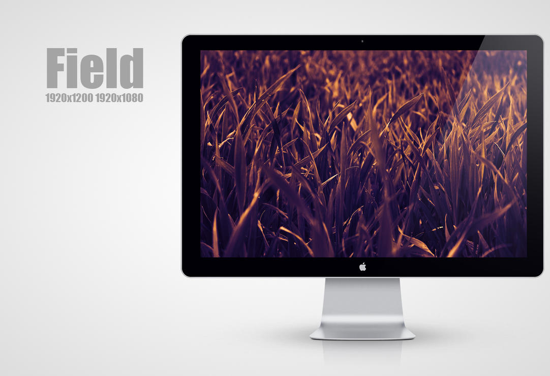 Field Wallpaper by MadMilov2