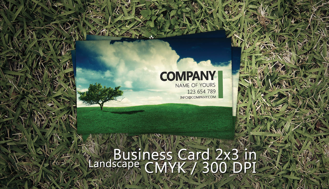 Landscape Business Card PSD by Martz90