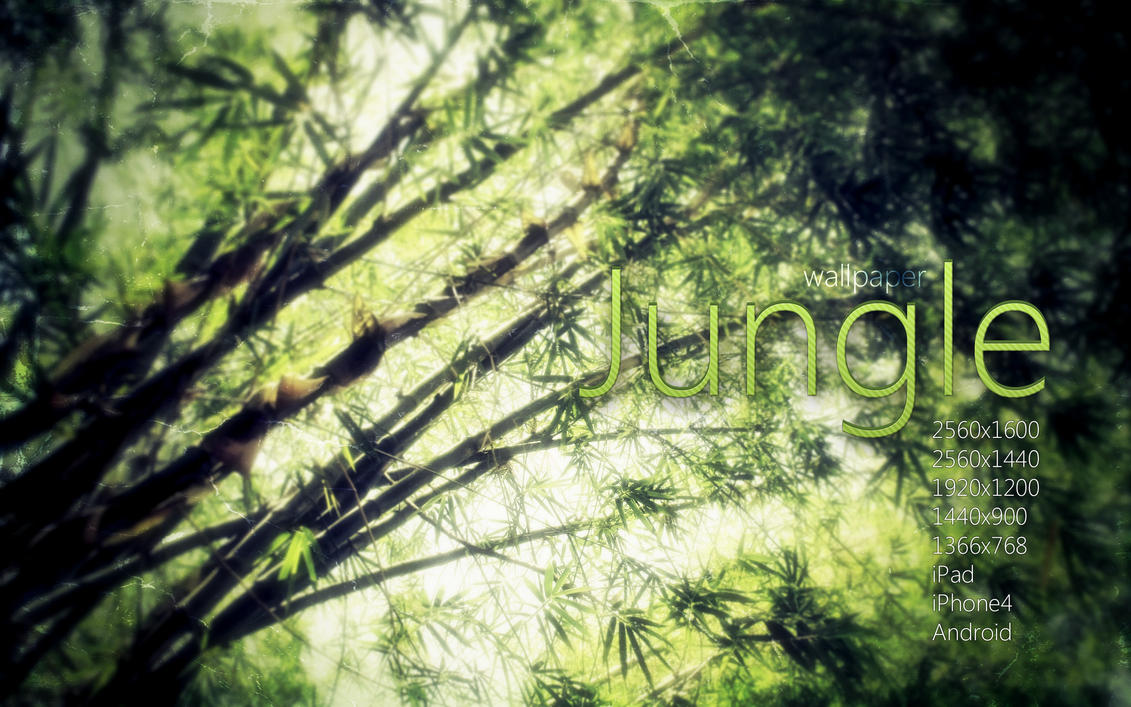 Jungle Wallpaper by Martz90