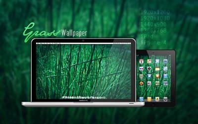 Grass Wallpaper by Martz90