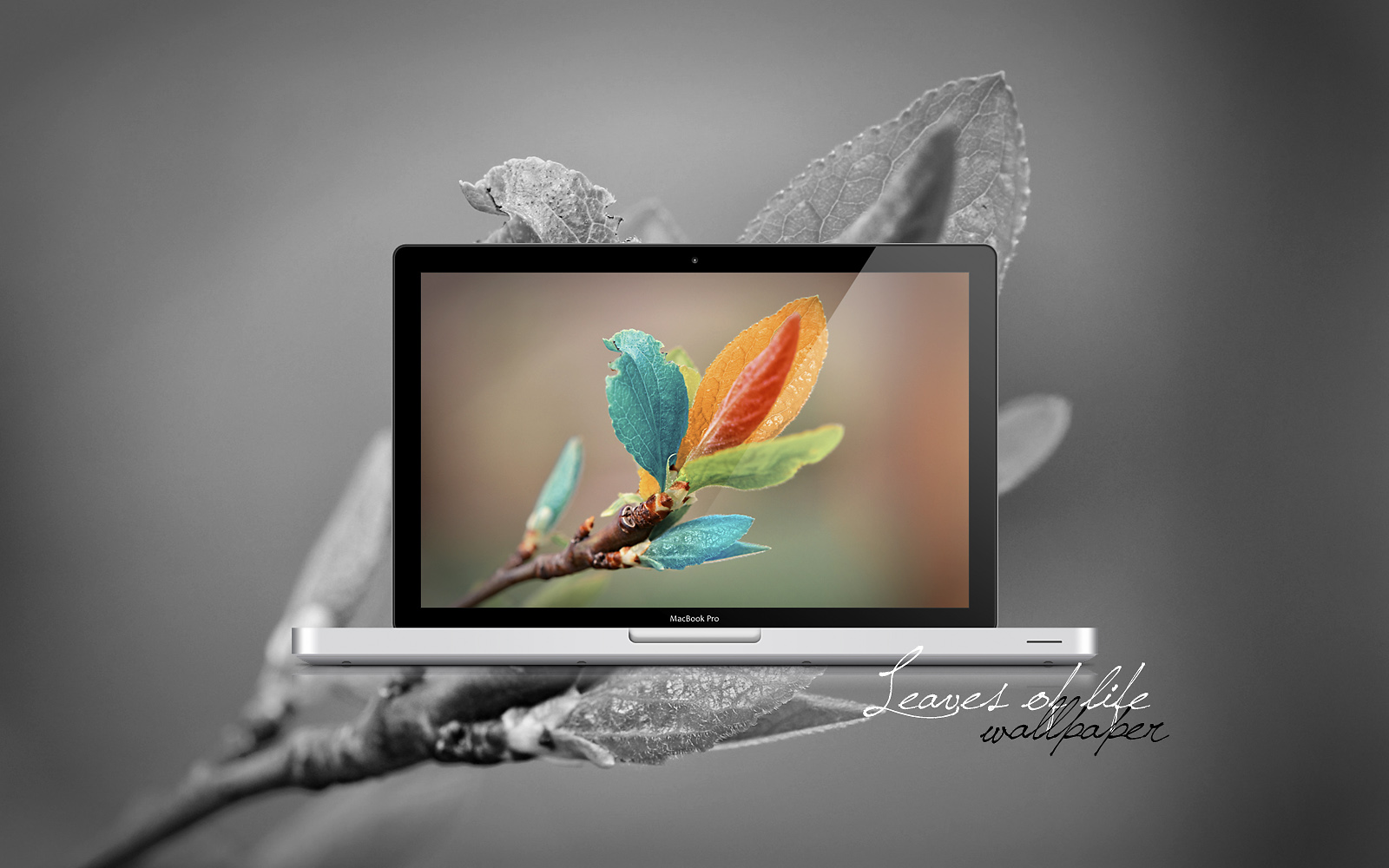 Leaves of Life wallpaper by Martz90