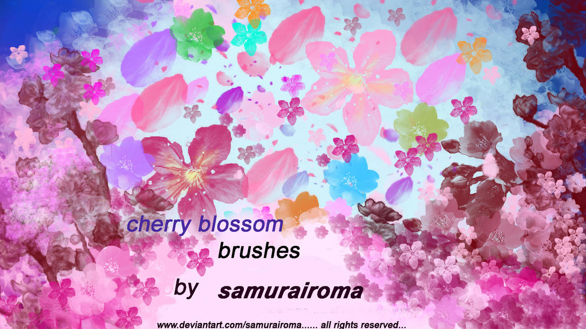 cherry blossom brushes by samurairoma