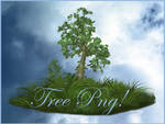 Tree png free
