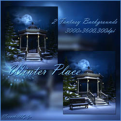 Winter Place by moonchild-ljilja