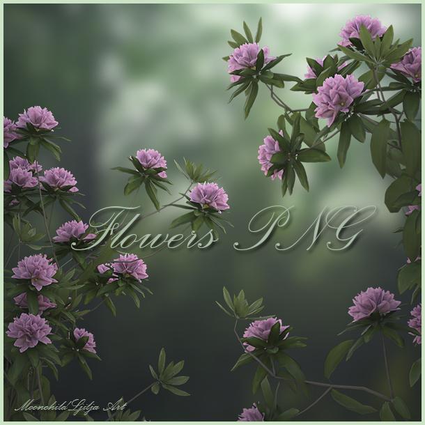 Flowers PNG by moonchild-ljilja