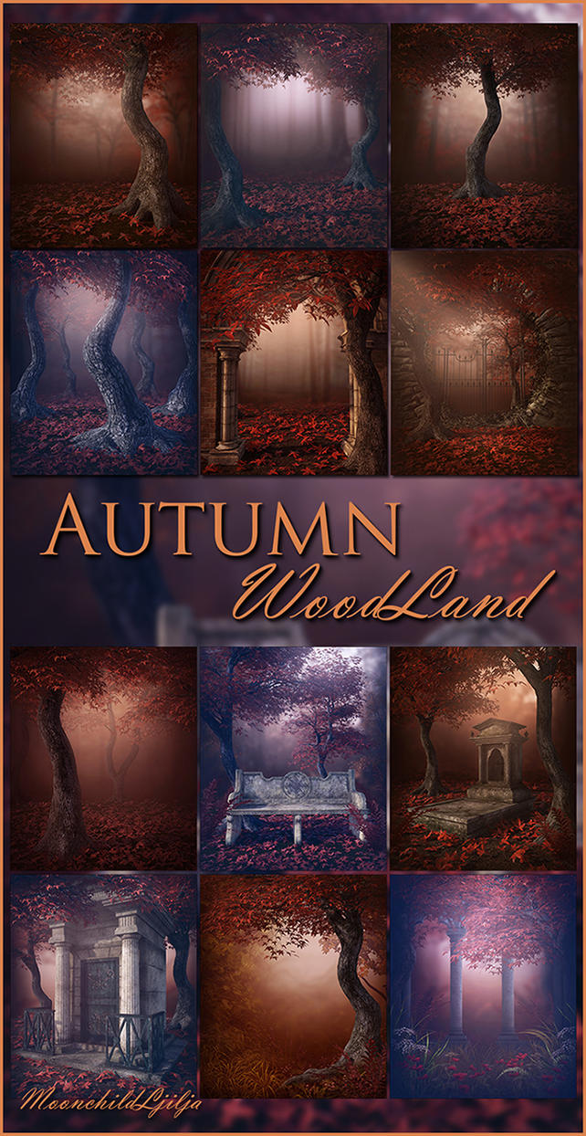 Autumn WoodLand backgrounds by moonchild-ljilja