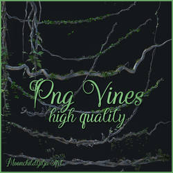 Png Vines new