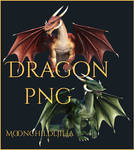 Dragon small pack