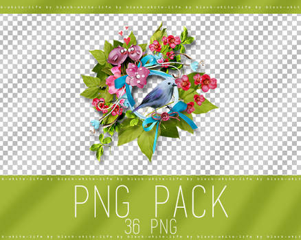PNG pack by black-white-life (51)