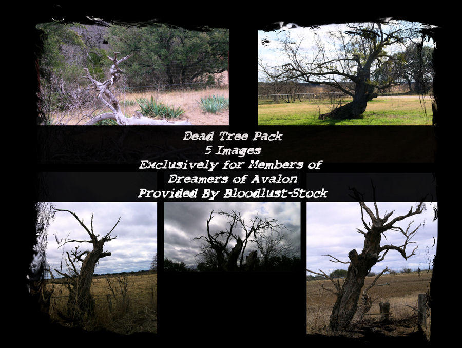 Dead Trees Pack by bloodlust-stock