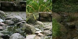 Creek 001