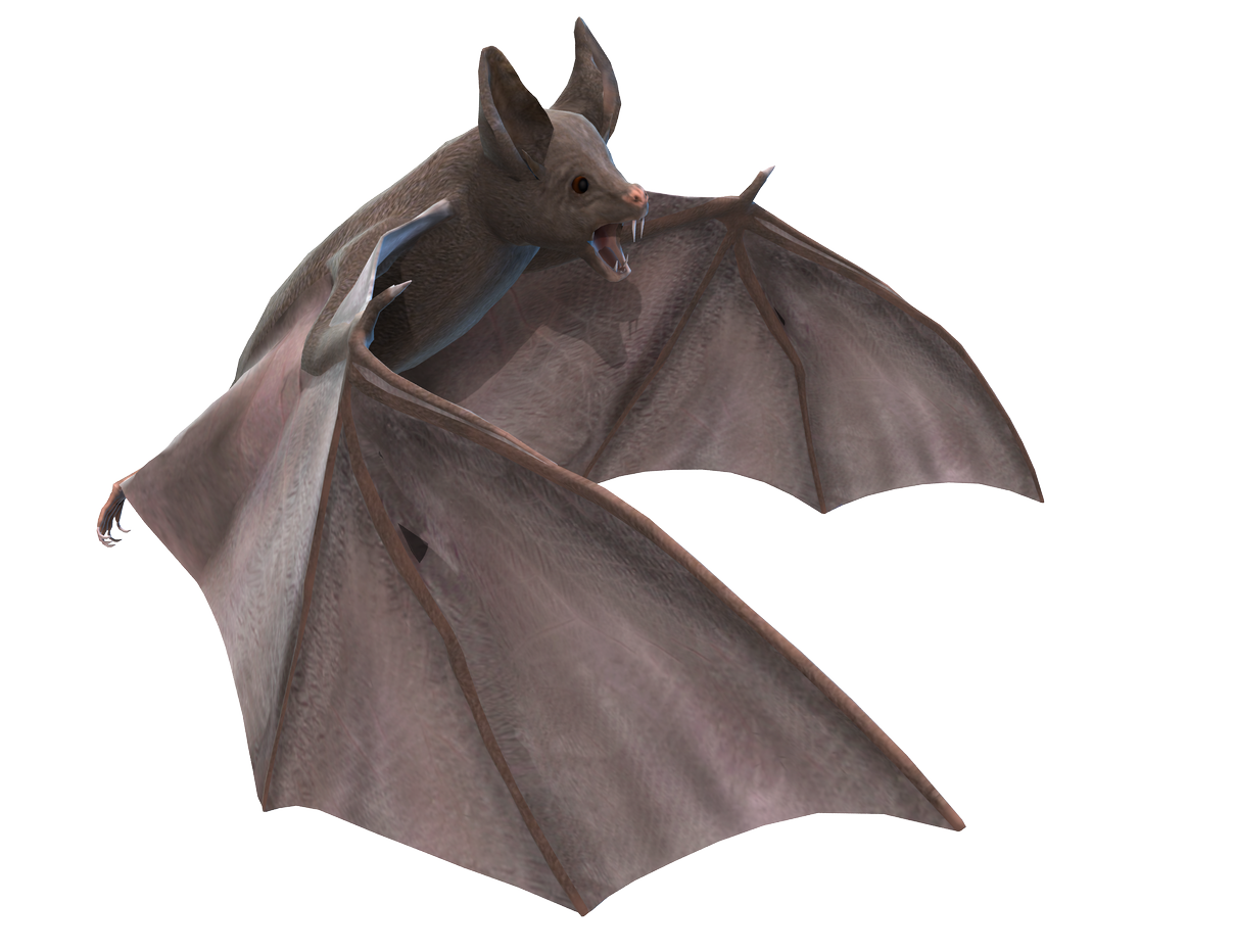 Bat PNGfile by neverFading-stock