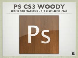 Photoshop Wood Icons by igabapple