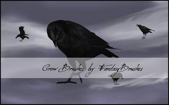 Crow Brushes by FantasyBrushes