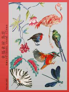 Flowers and Birds 10P png