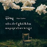 ParkBom Spring font