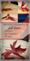 fall leaves pack
