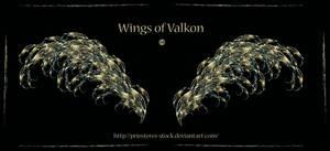 Wings Of Valkon