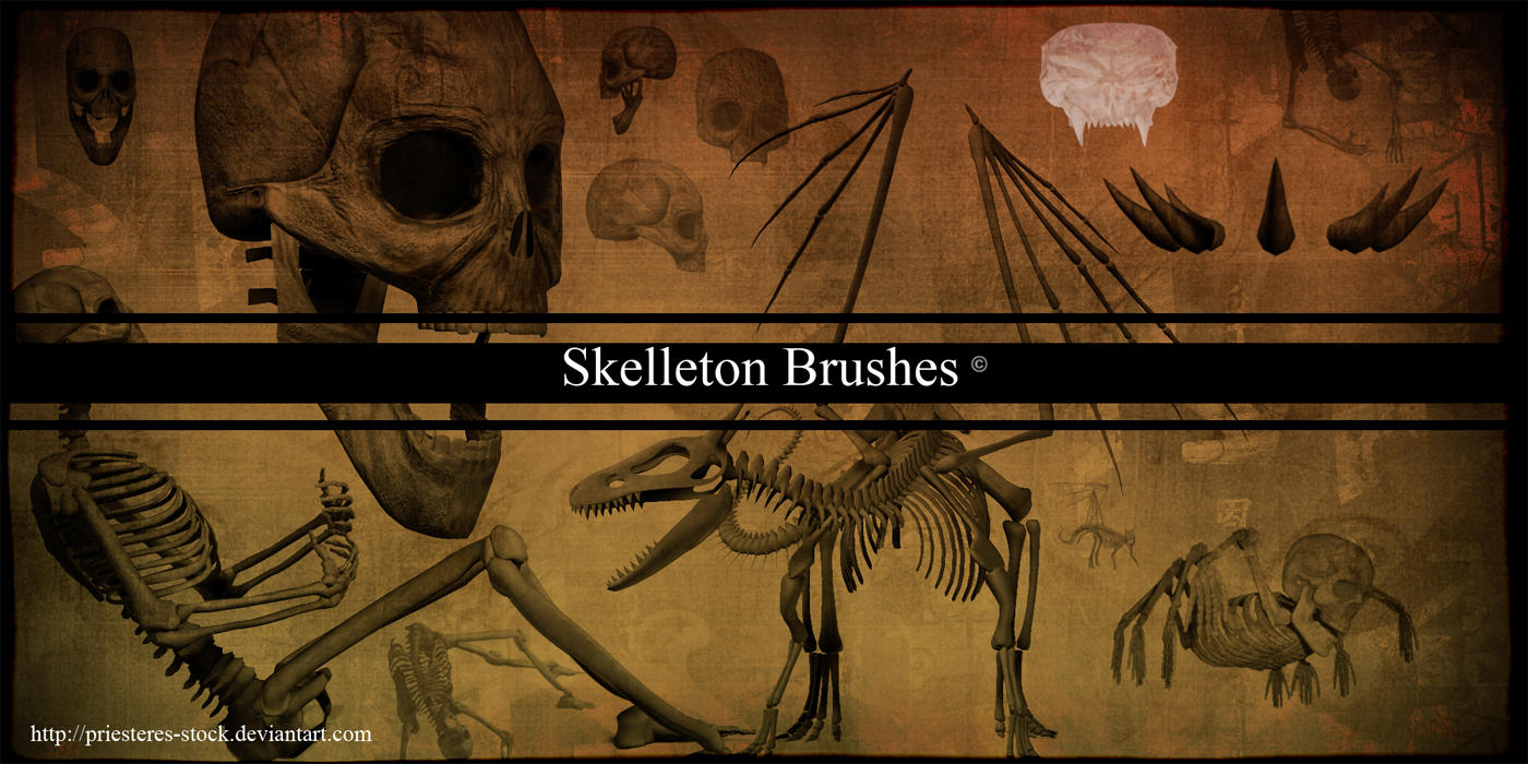 skelleton brushes by priesteres-stock
