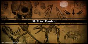 skelleton brushes