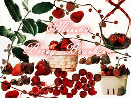 Berry brushes by miss69-stock