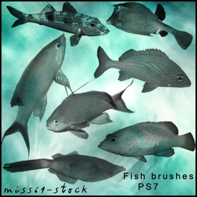 Fish brushes