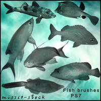 Fish brushes by miss69-stock