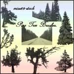 Pine tree Brushes