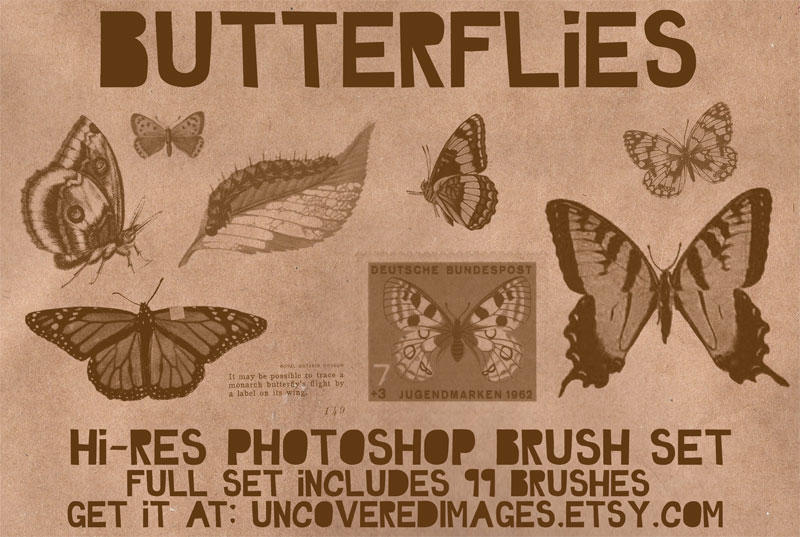 Butterflies Photoshop Brush by coreymarie