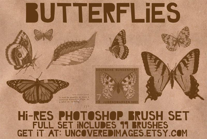 Butterflies Photoshop Brush by coreymarie