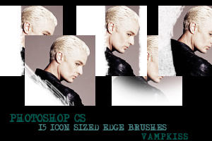 15 Icon Sized Brushes by vamp-kiss
