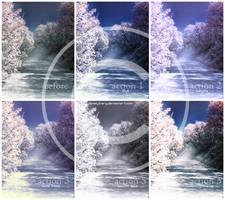Sakura Actions by LonelyDiary
