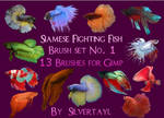 Siamese Fighting Fish Set 1