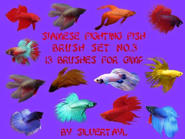 Siamese Fighting Fish Set No.3 by Silvertayl