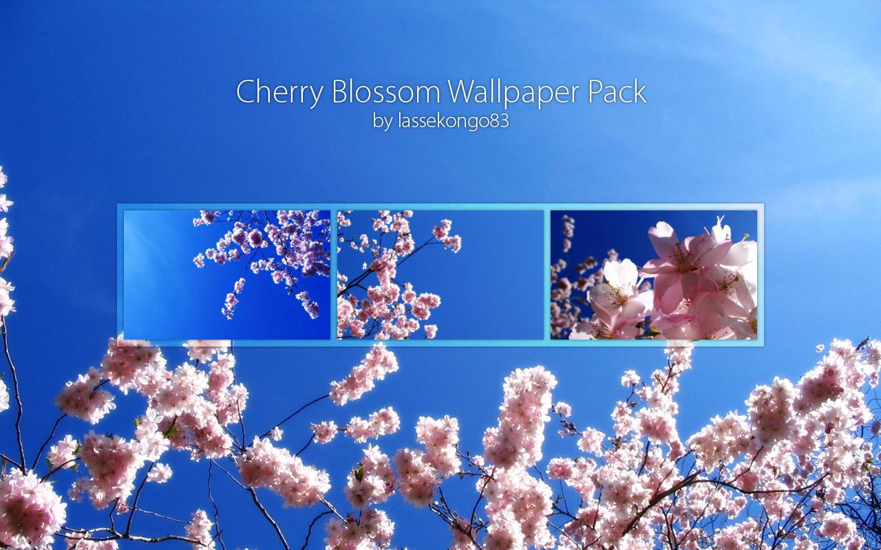 Cherry Blossom Wallpaper Pack by lassekongo83