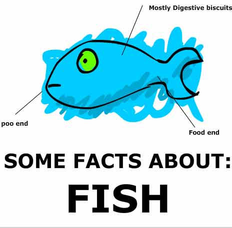 Some facts about fish by GuyFlash