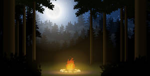 Forest night campfire