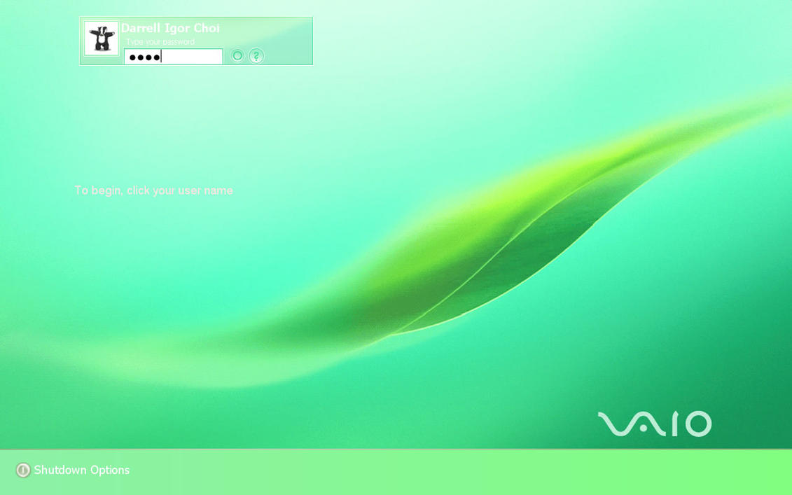 vaio logon screen