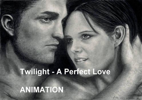Twilight wip animation