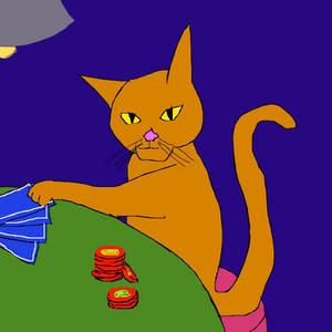 Cat Gambler