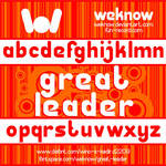 Great Leader font by weknow
