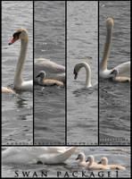Swan Package 1 by ArrsistableStock