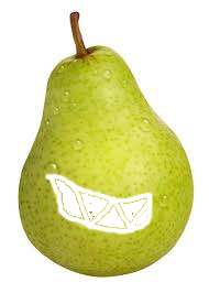 A really awful looking pear. by theCreeper8020